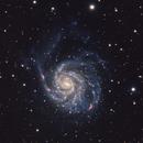 M101 - The Pinwheel Galaxy,                                Will Czaja