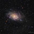 M33 - 30 Second Exposures,                                Scott