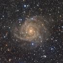IC 342,                                Fan
