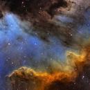 NGC 7000 - The Big Cygnus`s Wall,                                Rodrigo Andolfato