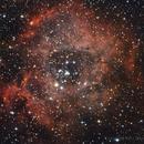 NGC2244 - Rosette Nebula,                                Dario Iraci