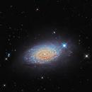 M 63 - Sunflower Galaxy,                                remidone