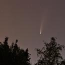 Comet C/2020 F3 Neowise,                                John van Nerum