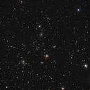 Abell 1367 - A galaxy Cluster in Leo - LRGB,                                Daniel.P
