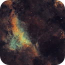 The Gamma Cygni Nebula,                                lefty7283