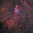 Christmas Tree and Cone nebula,                                Amir H. Abolfath