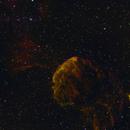 IC 443 (Jelly Fish Nebula),                                Nathan Morgan (nm...