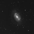 "NGC 4725 - C11 - HyperStar - Asi 183mm Pro - 220 x 30"",                                Alain-Bouchez"