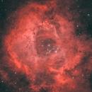 Rosette Nebula - Narrowband HOO Combination,                                Mahesh Kamkanamge