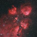 Cat's Paw Nebula (NGC 6334),                                Peter Pat