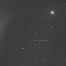 Comet C/2021 A1 (Leonard) first glance,                                Richard H