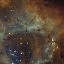 NGC2244,                                walter_schmitt