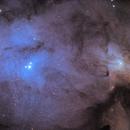 Rho Ophiuchi IC4604 IC4603,                                Pete Bouras