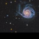 Messier 101 - The Pinwheel Galaxy,                                Kasra Karimi