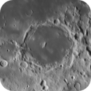Pitatus 2020/11/07,                                Wouter D'hoye