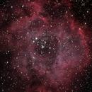 Rosette Nebula Revisit,                                IDDAN