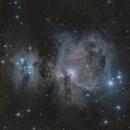 M42 Nébuleuse Orion,                                Oliverglobetrotter