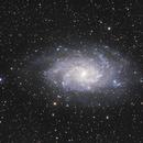 M33, la Galaxie du Triangle,                                Vincent Caron