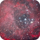 Rosette Nebula Cropped,                                Chris Price