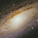 Andromeda galaxy Crop,                                JORGE RICARDO