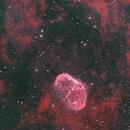 NGC6888,                                Greg Watkins
