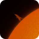 Summer Sun with Prominences,                                Mat