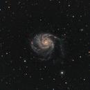 M 101,                                Alessandro Curci