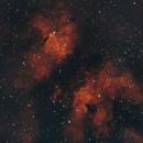 IC 1318 - Butterfly Nebula,                                Mariusz Golebiewski