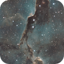 IC1396 - The Elephant Trunk Nebula,                                John Kulin