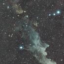 WitchHead Nebula,                                Yash