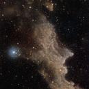 The witch head nebula,                                Massimo Miniello