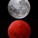 Super Moon Eclipse comparison,                                dsoscope