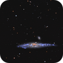 Whale galaxy,                                Mark