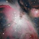 M42 up close,                                Tom's Pics
