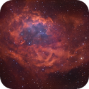 Sh2-261 Lower's Nebula, LBN862,                                Rolf Dietrich