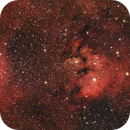 NGC7822 DSLR image,                                Kees Scherer