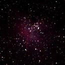 Eagle Nebula (M16),                                dgould1977