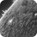 Sun - Two massive sunspots with the larger at almost 3 times the size of the earth,                                Deddy Dayag