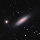 NGC 6503,                                Stefan