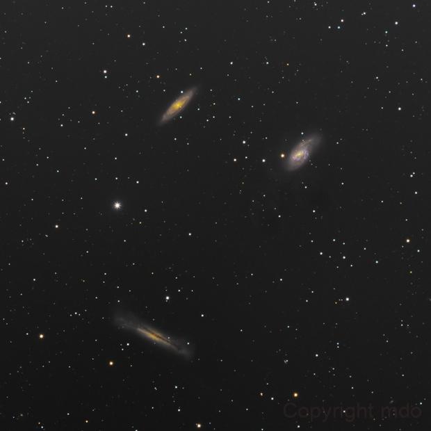 M 65, M 66,  NGC 3628, Loewe Trio,                                mdohr