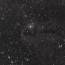 LDN 1251 in Cepheus,                                Maciej