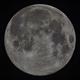 Moon full,                                Siegfried