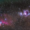 M42 Orion Nebula and Horsehead Nebula,                                Göran Nilsson