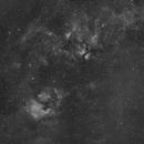 Cygnus bölgesi,                                guvenozkan