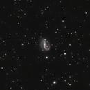 NGC7479,                                Don Walters