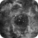 NGC2244 - Nebulosa Rosetta,                                Francesco Di Cencio