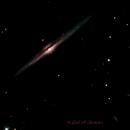 NGC 4565 Needle Galaxy,                                Dale A Chamberlain