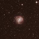 Southern Pinwheel Galaxy,                                Richard Muhlack