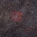 IC 1396 Widefield,                                Jonas Illner