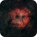 IC1396,                                Mikhail Shibaev (astrophoto) & Alexander Suhocky (photo processing)